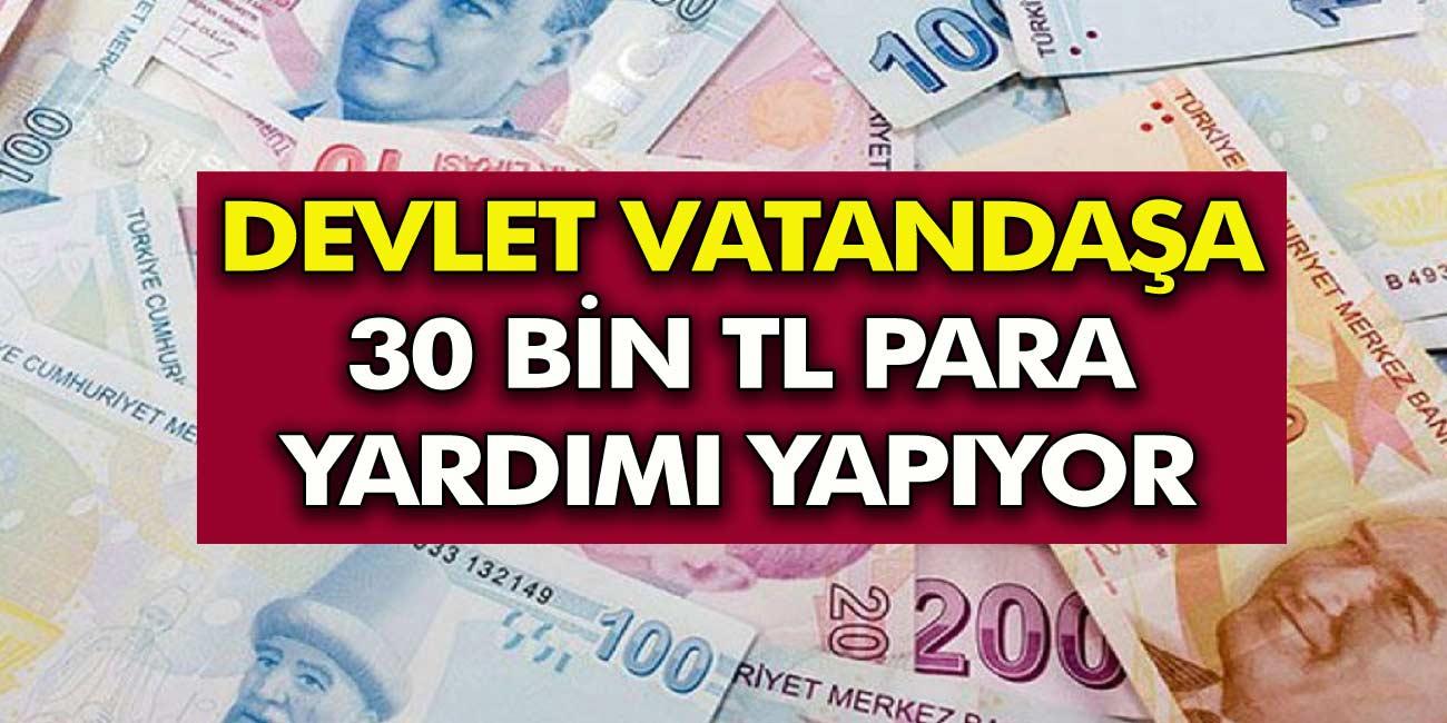 Devlet Vatandaşa 30.000 TL Destek veriyor! PTT Ve Halkbank Anında alabilirsiniz!