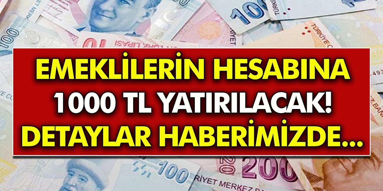 Emeklilerin Hesabına 10.000 TL Yatırılacak! Başvurular Başladı Anında Ödeme Yapılacak!