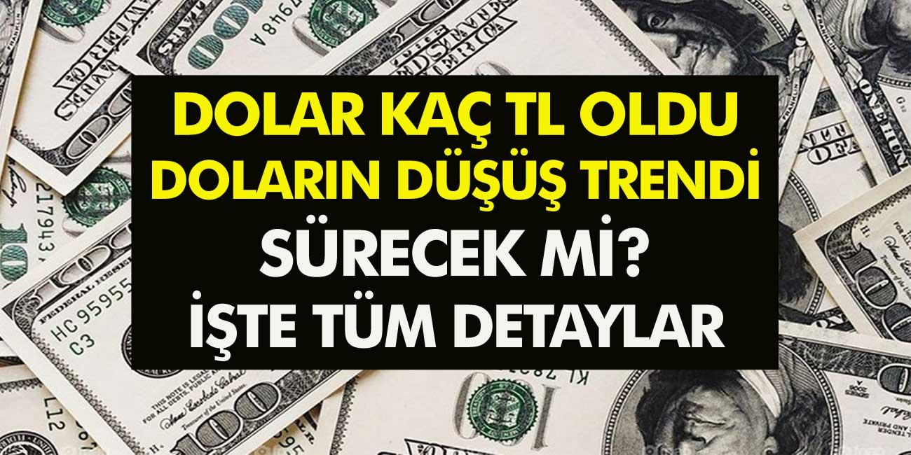 Dolar Kaç TL Oldu? Doların Düşüş Trendi Sürecek Mi? İşte Dolara İlişkin Merak Edilenler…