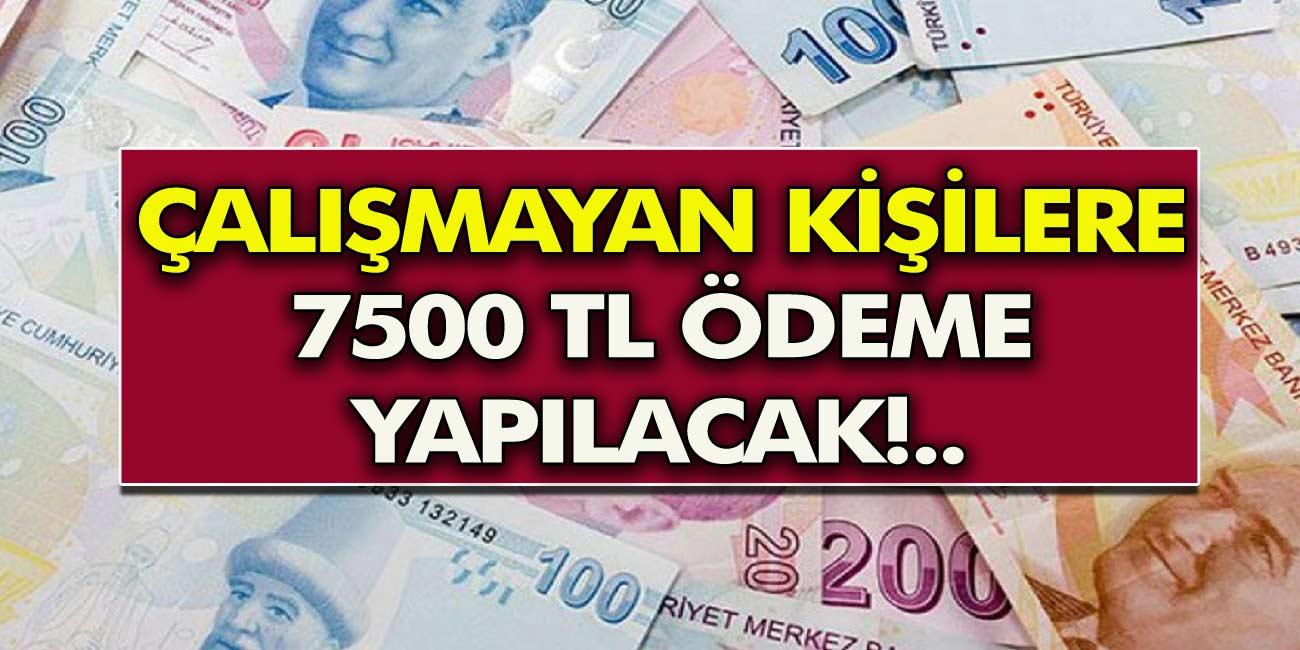 Çalışmayan vatandaşlara TC Kimlik Numarası ile 7500 TL Ödeme yapılacak
