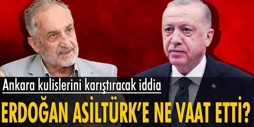 Gündemi sarsan iddia! Cumhurbaşkanı Erdoğan Asiltürk'e neler vaat etti! Her şey ortaya çıktı