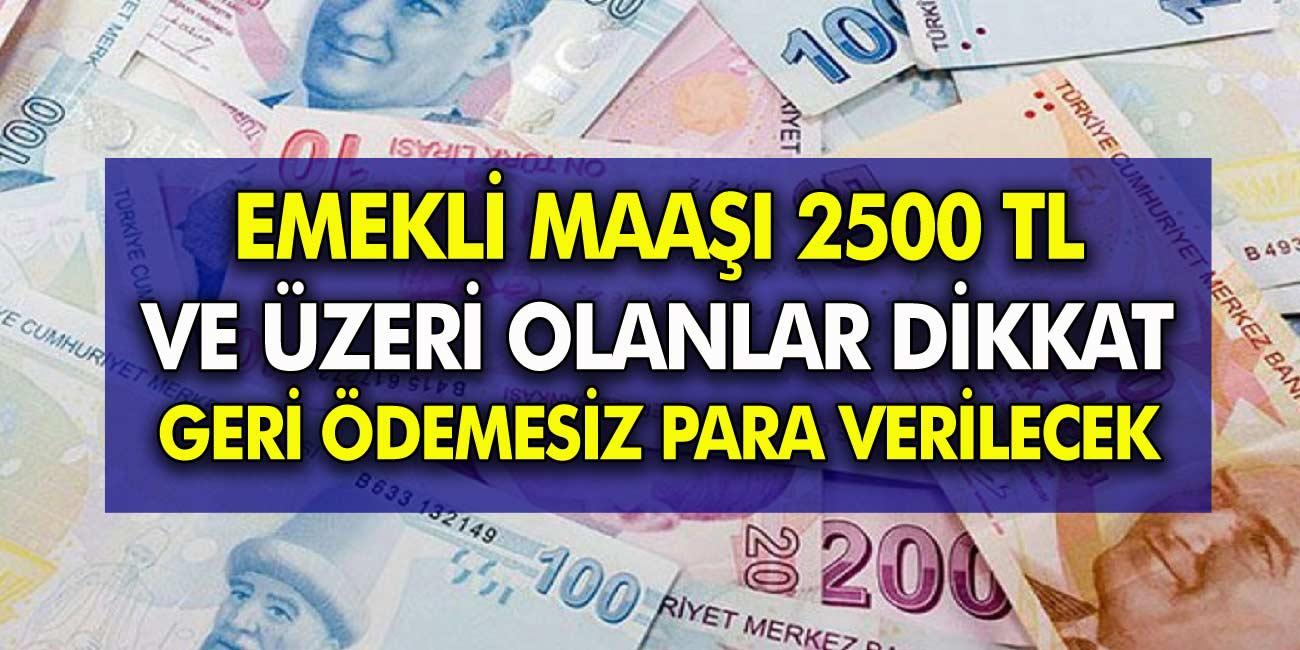 Emekli maaşı 2500 TL üzeri olan herkesi ilgilendiriyor: Geri ödemesiz para verilecek!