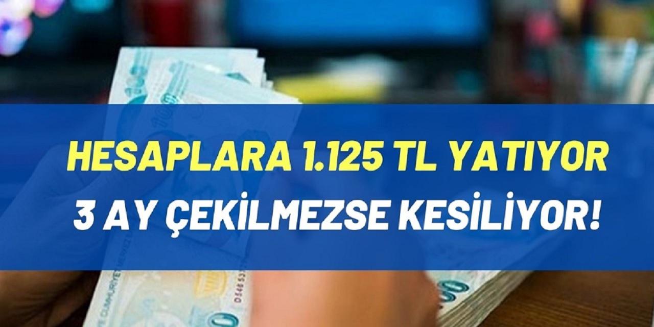 Milyonlar vatandaşa 1125 TL maaş verilecek! İşte başvuru şartları ve tüm ayrıntılar...
