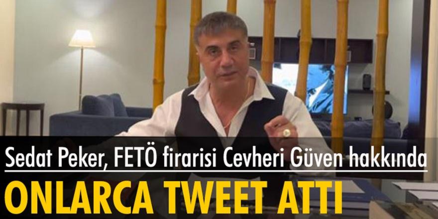 Sedat Peker Twitter hesabından FETÖ firarisi Cevheri Güven hakkında açıklamada bulundu...