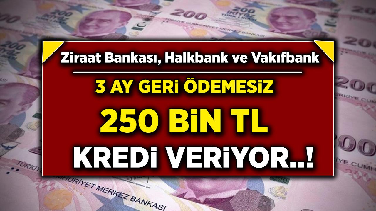 4 Büyük Kamu Bankası Anlaştı! Vakıfbank, Halkbank, Ziraat Bankası 250 bin TL Kredi Veriyor! En ideal konut kredisi hangi bankada?