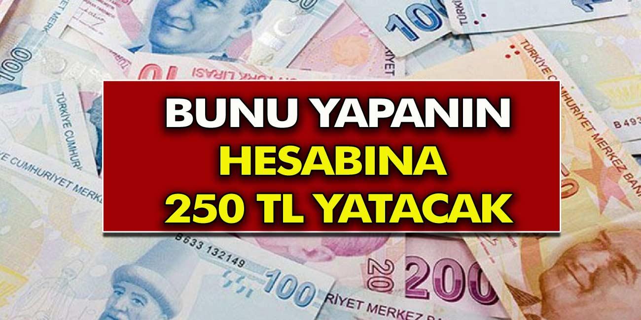 Başvuru yapan Herkesin hesaplarına 250 TL para yatacak! Ziraat Bankası müjdeyi açıkladı!