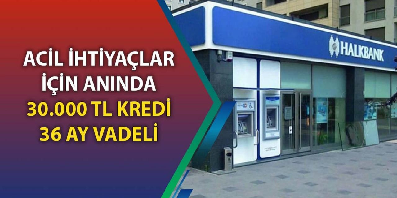 Halkbank Müjdeyi Verdi 130 Bin TL'ye kadar Kredi vereceğini Duyurdu! 60 Ay Vade İle hemen Kredi Alabilirsiniz